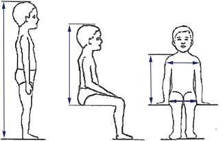 Las medidas corporales según i-Size